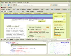 Firebug visualisointi